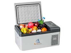 Tủ lạnh mini xe ô tô C15